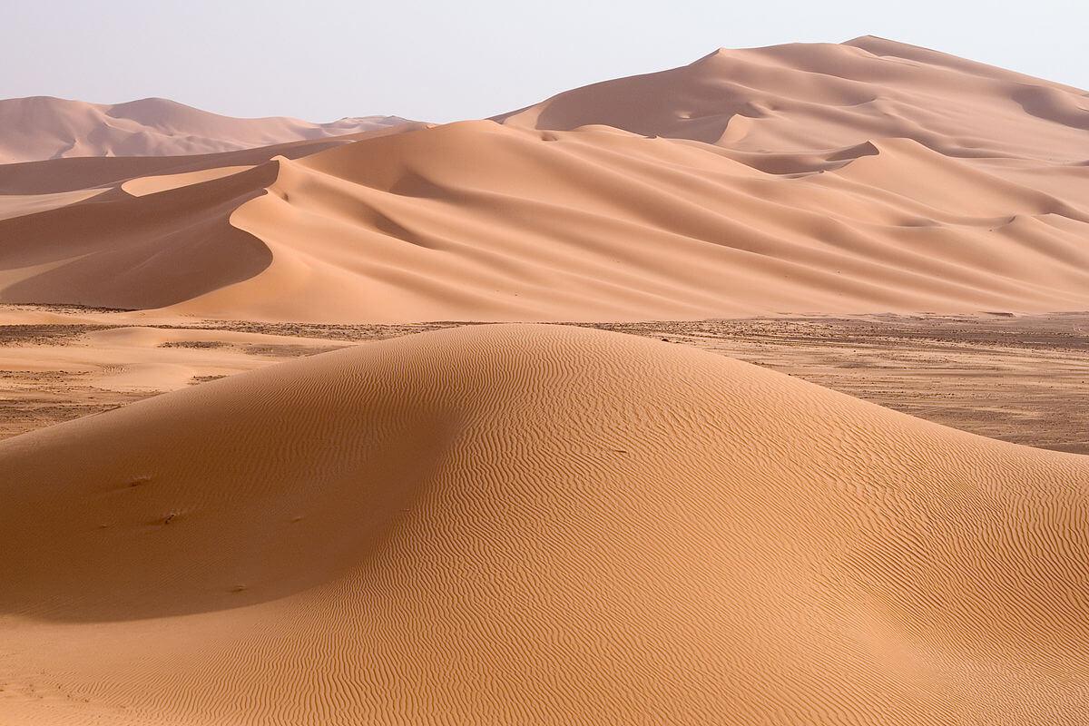土地活用の不動産屋を独自でみつけるのは砂漠で砂金を見つけるようなもの